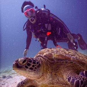 sodwana bay - grab a dive